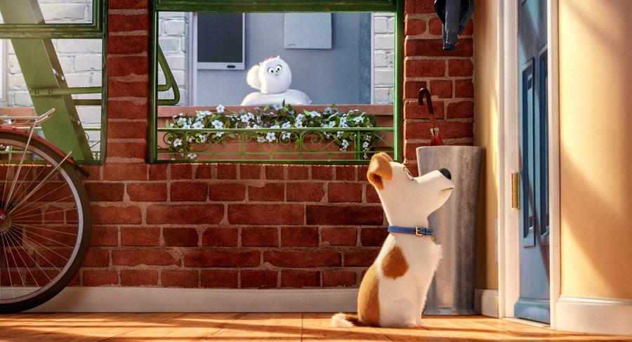 Filmowe Ferie: Sekretne życie zwierzaków domowych